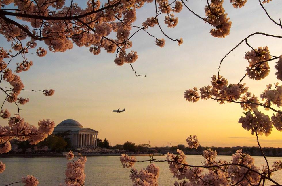 Plane flying into Washington D.C. at sunset.