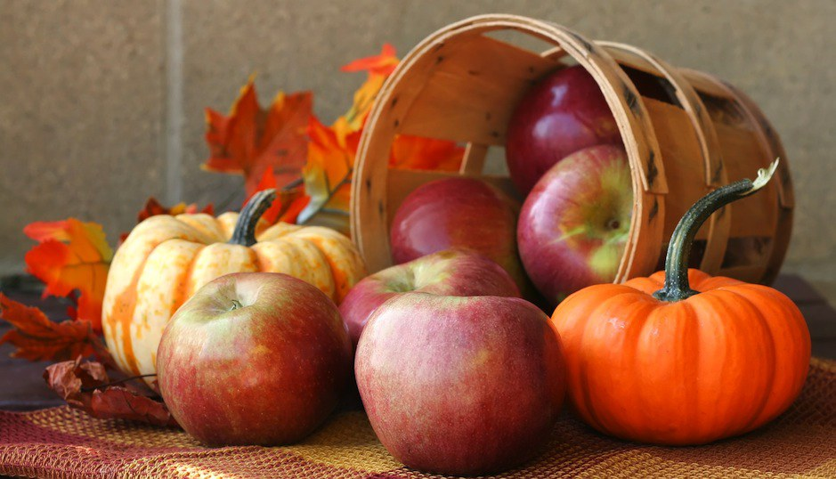 Image result for fall season is a good time for apples