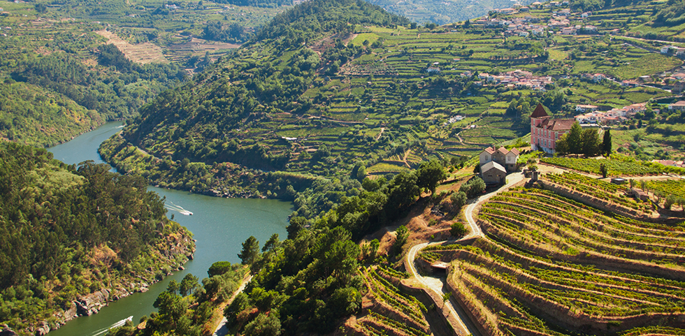 Aerial view of Douro Valley in Portugal