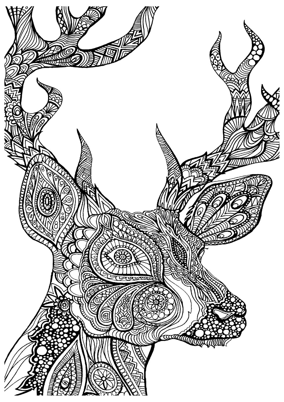 Coloring Pages You Can Color Now : Free adult coloring pages you can print right now