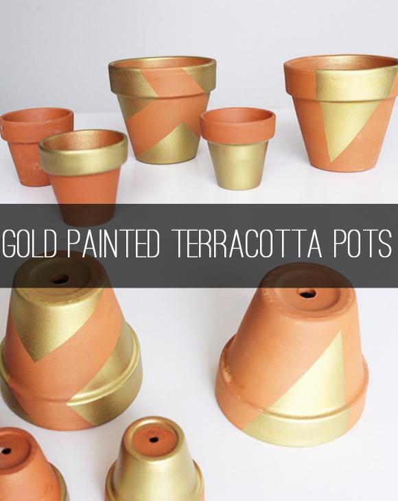 Spray Painting Terracotta Pots Ideas