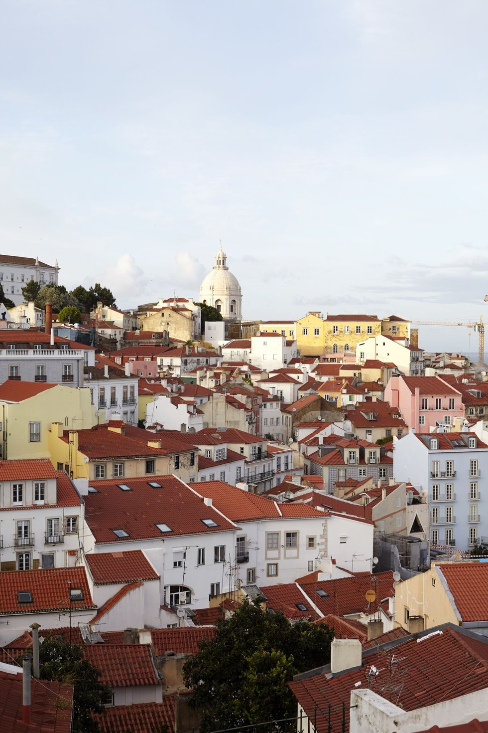 the red rooftops of Alfama, Lisbon
