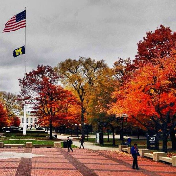 Arbor Place Dr: 10 Times Michigan's Fall Scenery Captured Your Heart