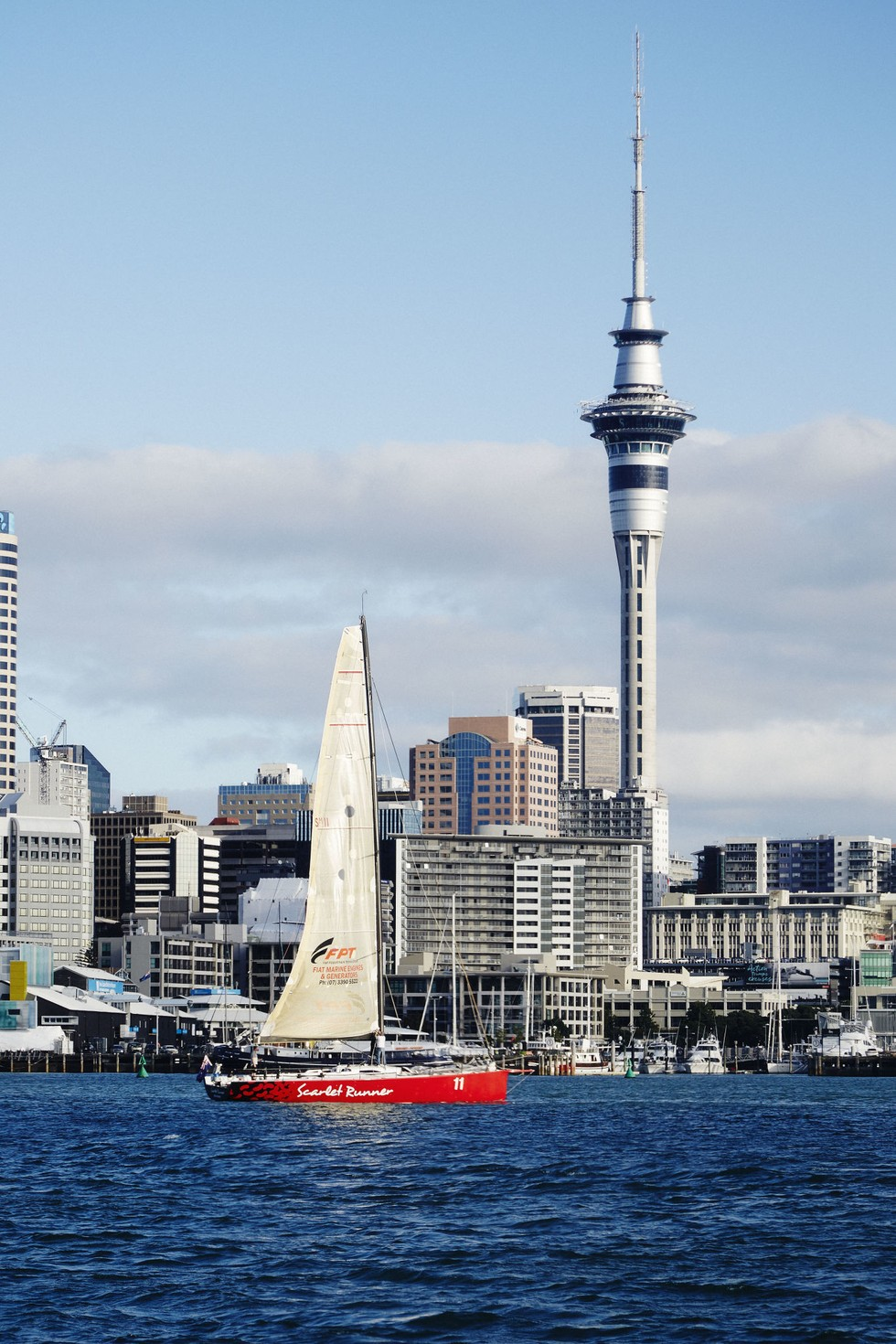 Skyline views at Viaduct Harbour in Auckland