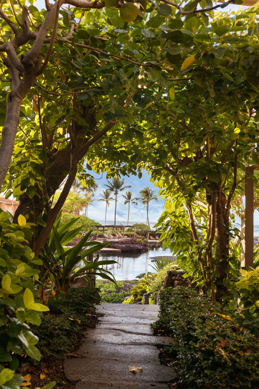 The King's Pond at the Four Seasons Resort Hualalai