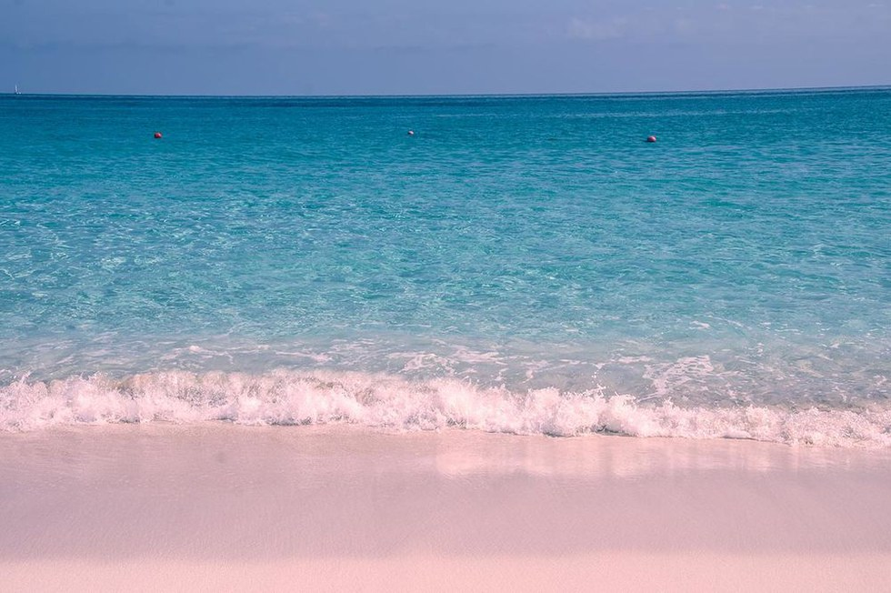 Pink Sands Beach in Harbour Island, Bahamas
