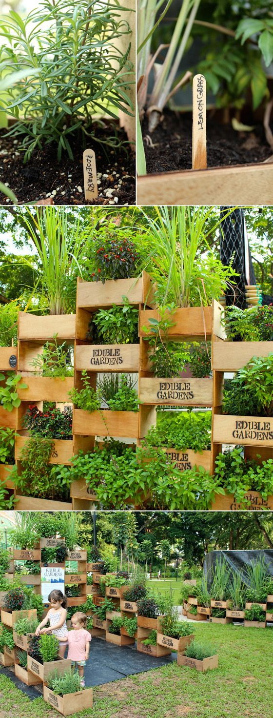 edible garden walls
