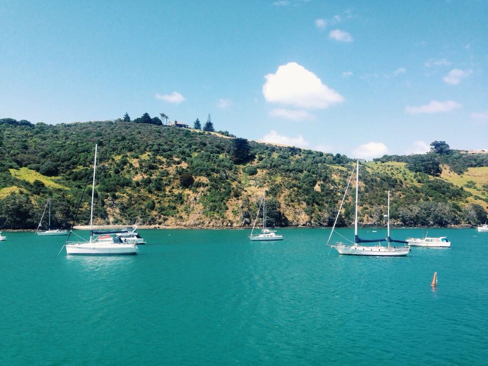 Sailboats docked alongside the small island, Waiheke