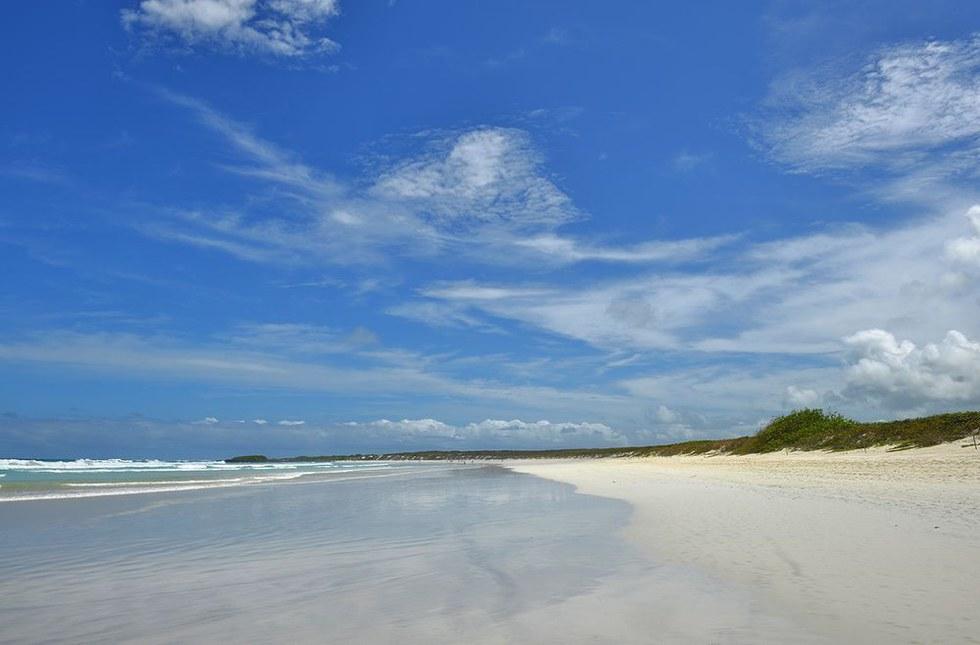 Tortuga Bay Beach  in Galapagos, Ecuador