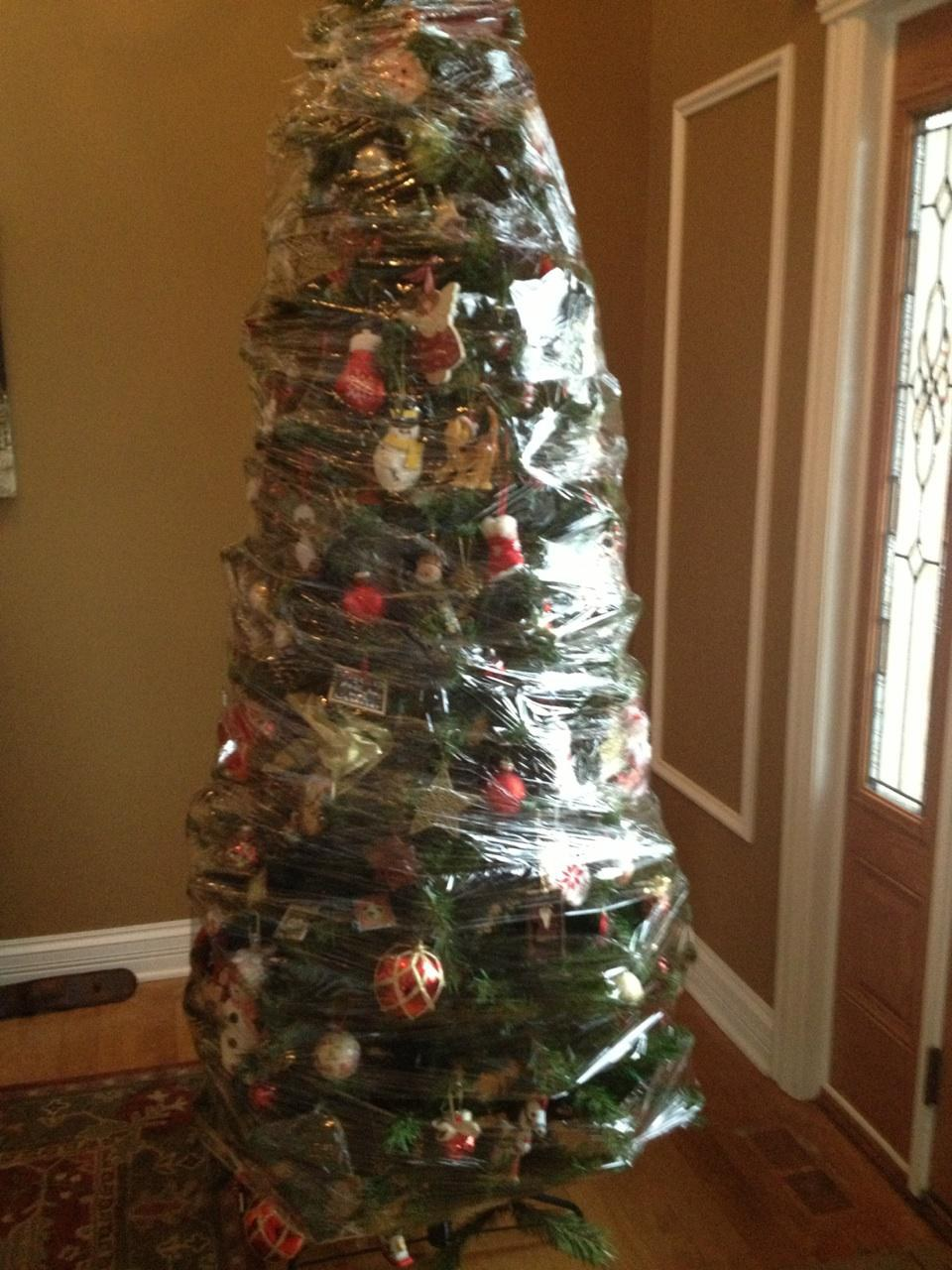 The Worst Thing About Christmas Decorations