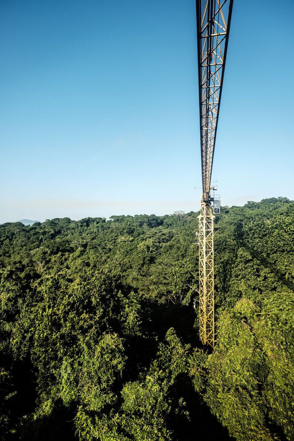 The canopy crane at the Parque