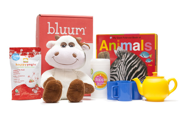 Bluum -- toy subscription boxes