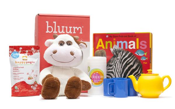 Bluum -- toy subscription boxes