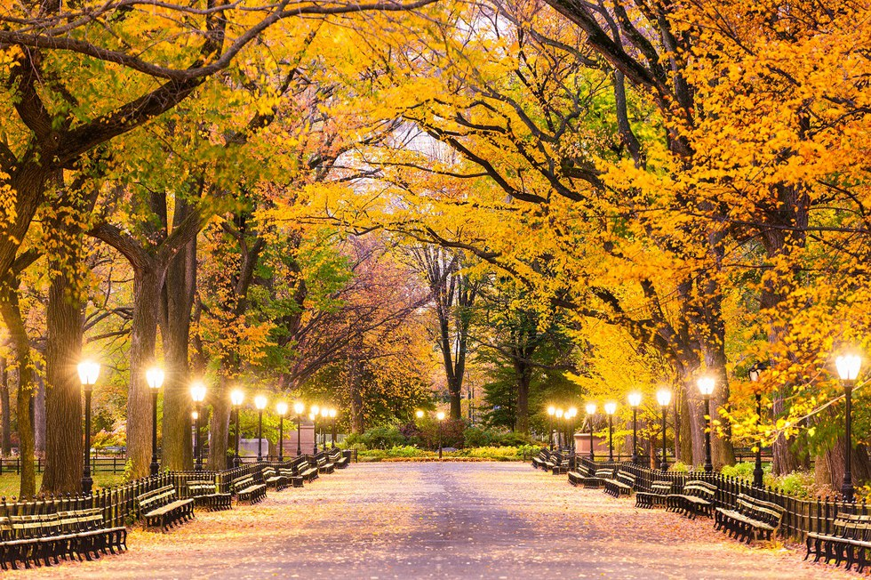 5 Cities For The Perfect Fall Weekend Getaway