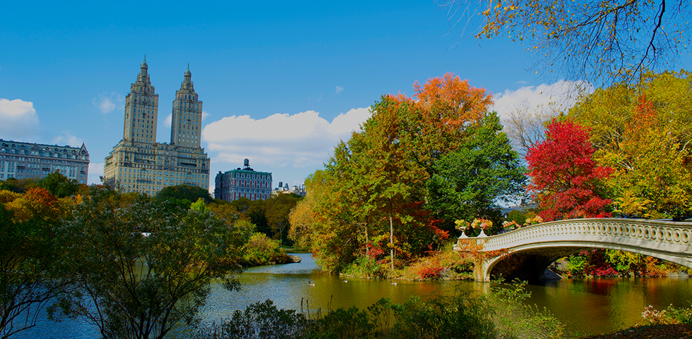 View of Central Park in Manhattan, New York