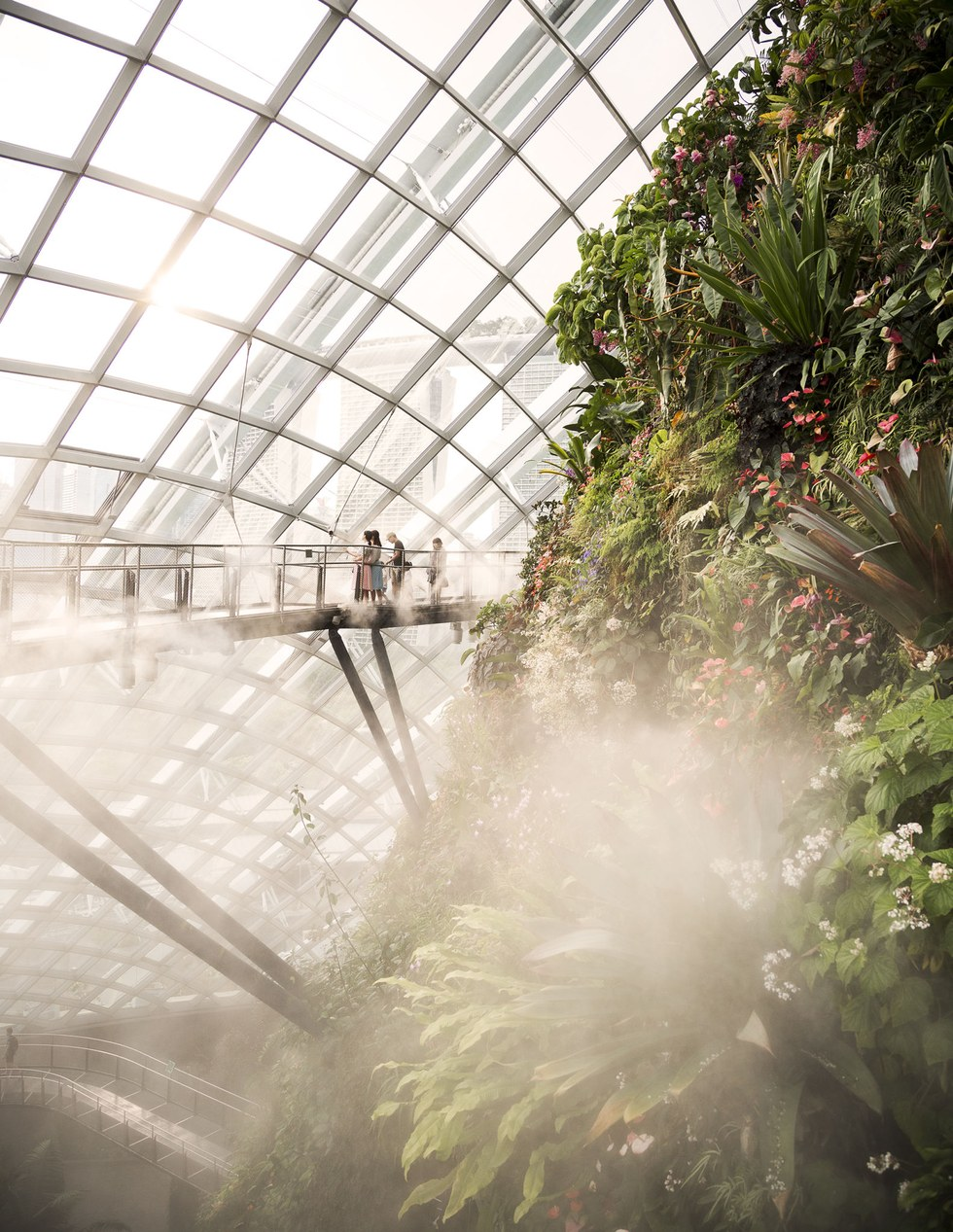 The Cloud Forest at Gardens by the Bay