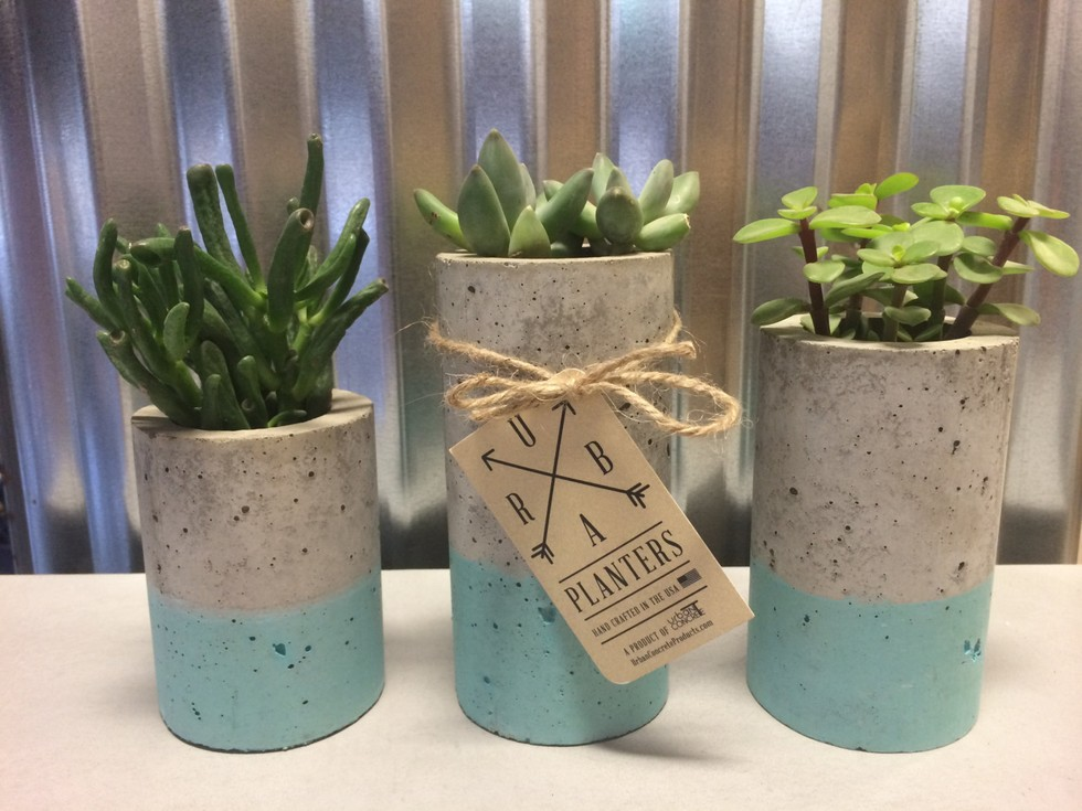 How To Projects Cement Mini Planters The Snug
