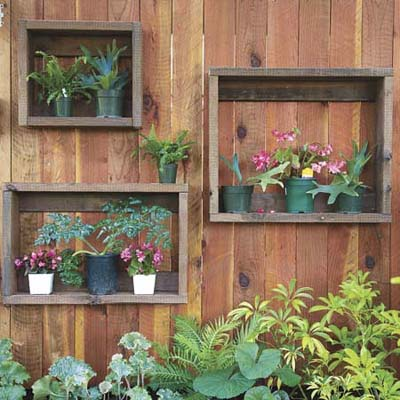 put small plants into shadow boxes outside