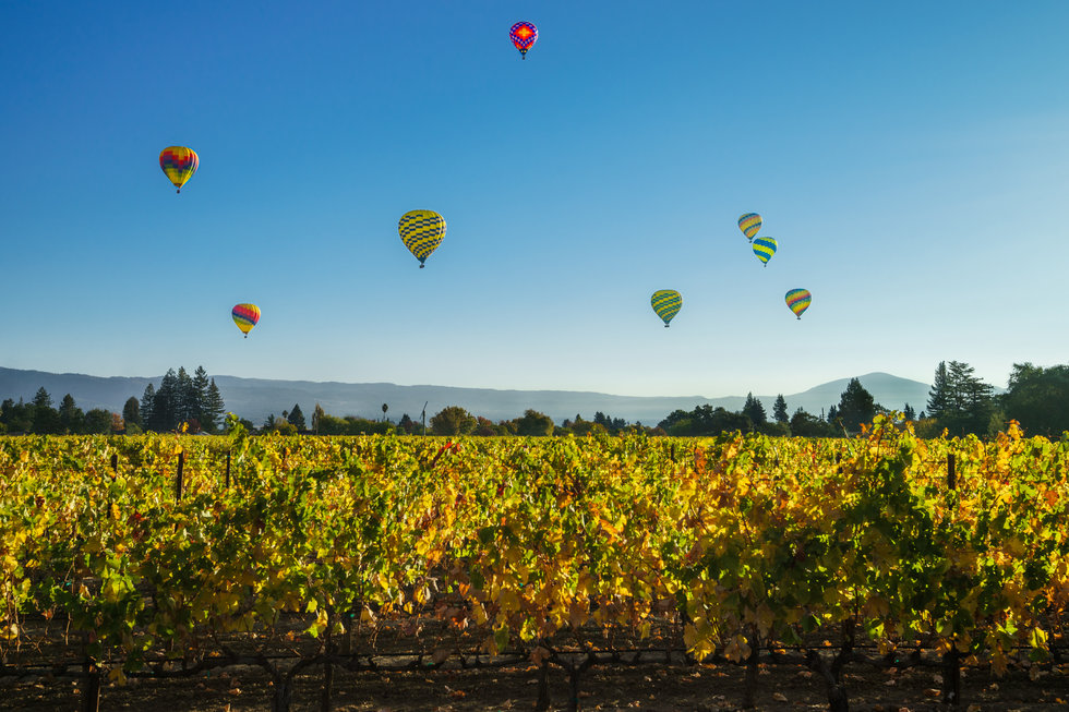 Hot air balloons drifting above Calistoga Ranch