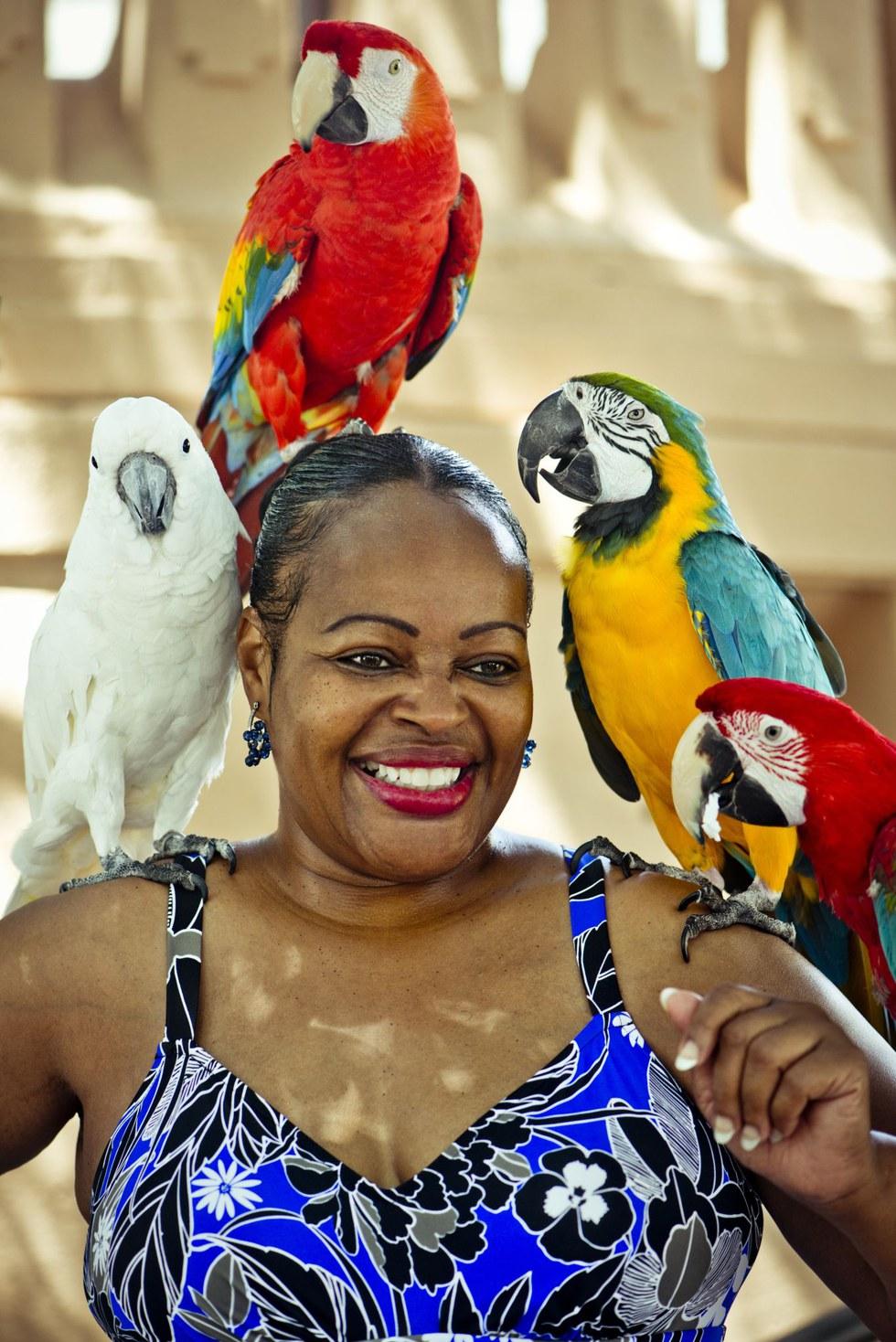 A bird-loving Old San Juan local