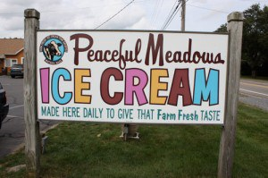 8 Best Places For Ice Cream On The South Shore Of