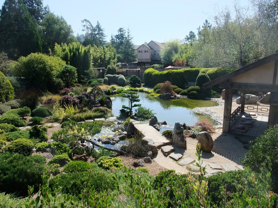 Exploring Sonoma County Beyond the Vineyards