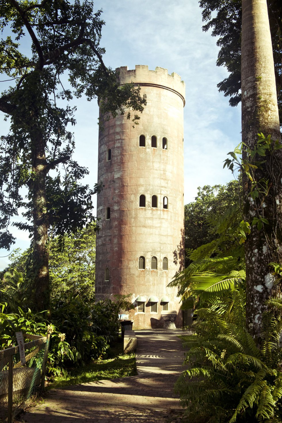 El Yunque National Forest's Mount Britton observation tower