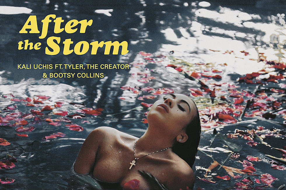 After the Storm Genius Lyrics