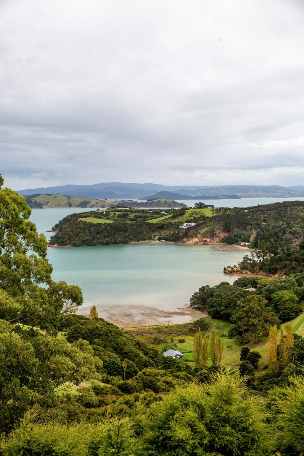 A view of the green, lush coastline of Waiheke Island