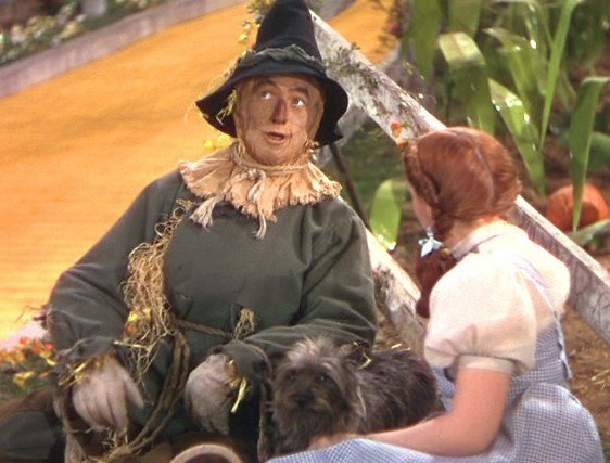 the important lessons to be learned in the wizard of oz This year the movie, 'the wizard of oz' celebrates 75 years since its premiere   you can't always get the important lesson from being taught or reading a book.