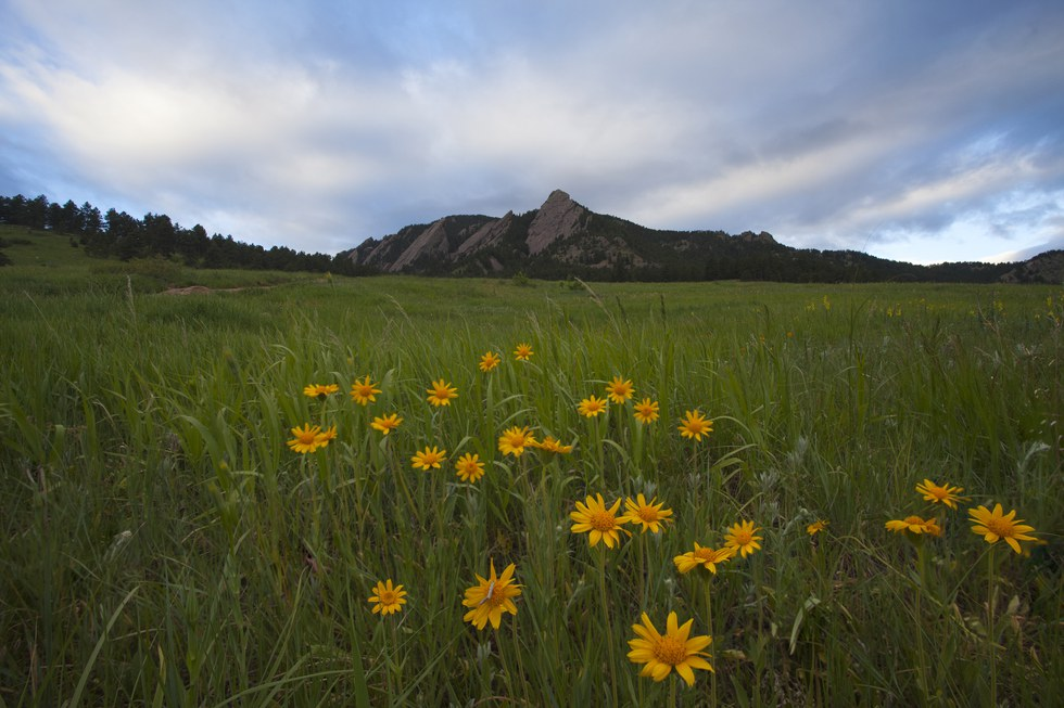 The Flatirons from the Chautauqua Park trailhead in Denver