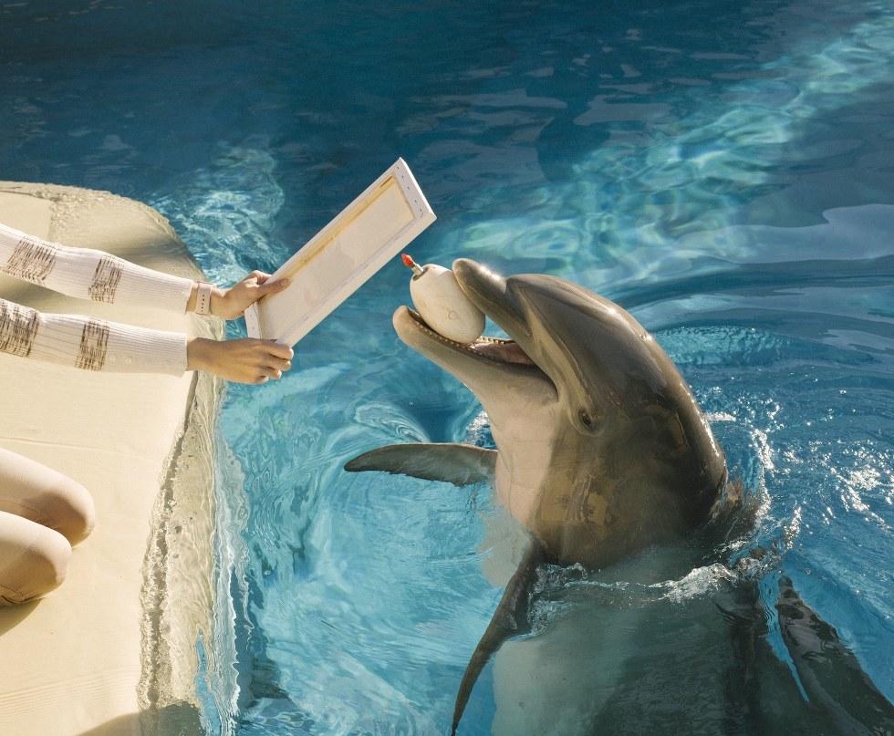 An artistic marine mammal at Siegfried & Roy's Dolphin Habitat