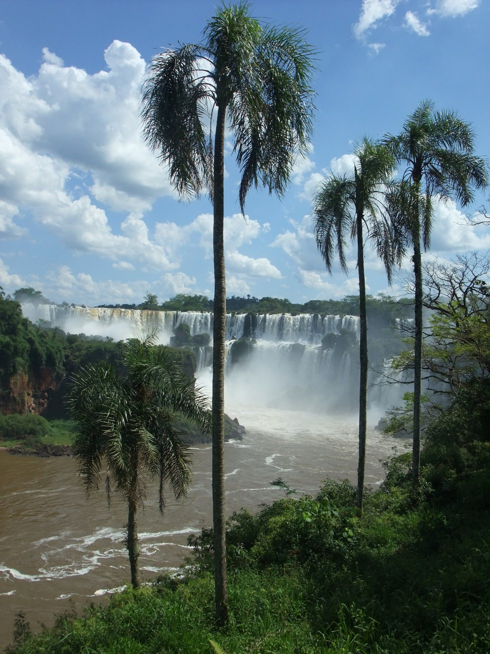 The Iguazu Falls in the rain forest on the border of Brazil and Argentina
