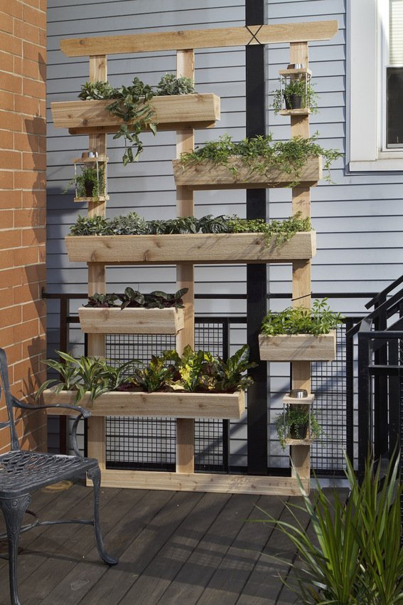 Living garden wall or divider
